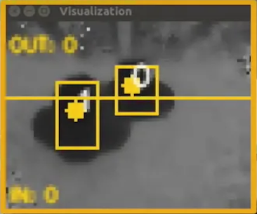 People Counting Visualization