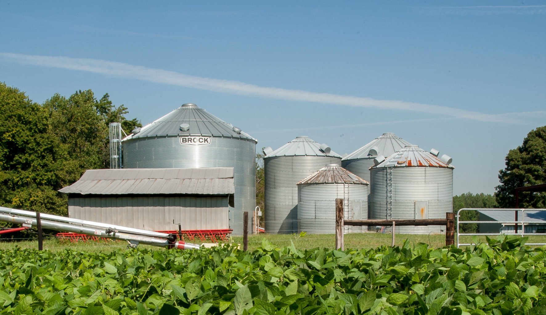 Terabee Blog Smart Farming & Innovations in Silo Level Monitoring